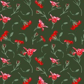 Sweet Geranium Red (316V)