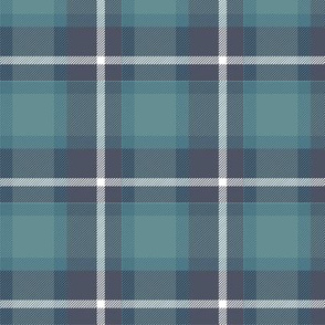 Coneflower Plaid