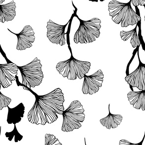 Ginkgo leaves black & white large scale