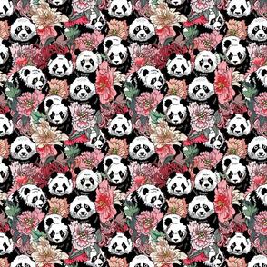 Because Panda