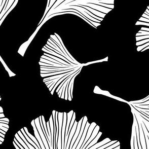 Ginkgo Biloba Plant, Line art Black Leaves on White, Health Monochrome Ayurvedic Medicine