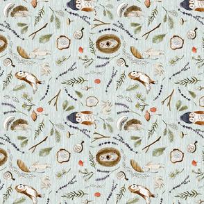 Autumn Owl Rotated
