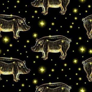 Glowing Night Pigs with Stars