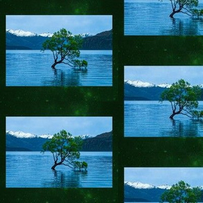 Wanaka Green Background
