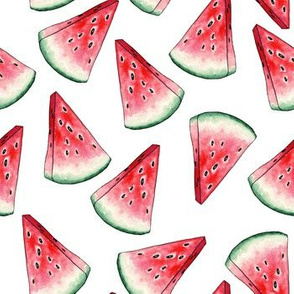 Red Watermelon Slices for your Summer