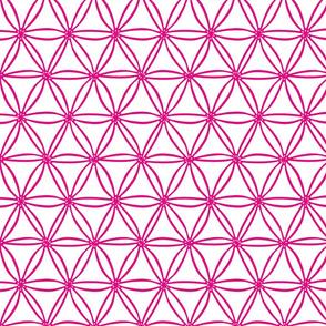 Pink geometric diatoms