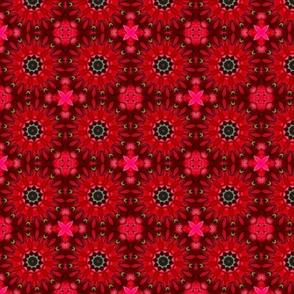 Poinsettia Pinwheels 3113