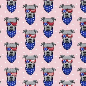 (small scale) patriotic Pit Bull on pink C18BS