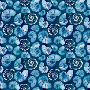 Nautilus fossils in sapphire blue small