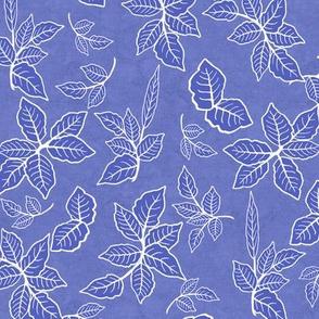 White Outline Foliage on Iris Blue Texture