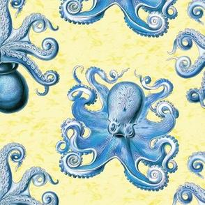haeckel's octopus  blue+yellow ink