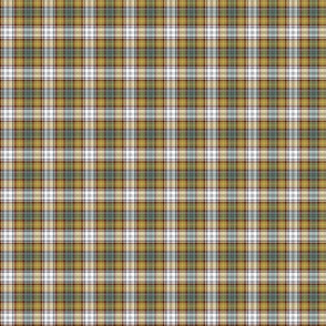 "Gordon dress tartan, 1"" weathered colors"