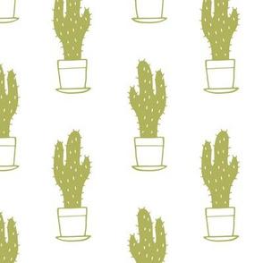 Lil Cacti