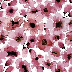 CherryBlossoms-01