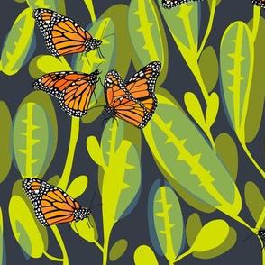 flutter_monarch_1