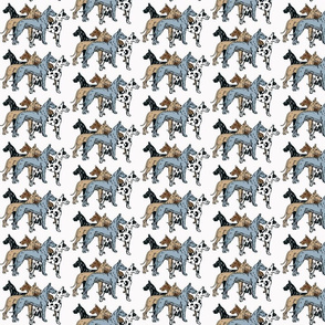great dane colors on white background fabric