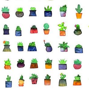 Happy Little Plants