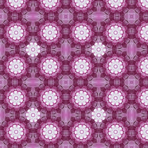 Pink and Daisies 1265