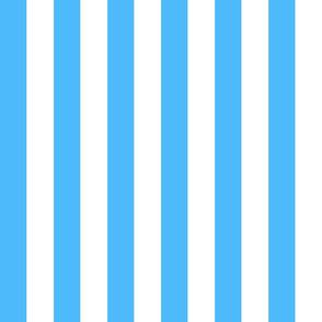Circus Blue & White - LG