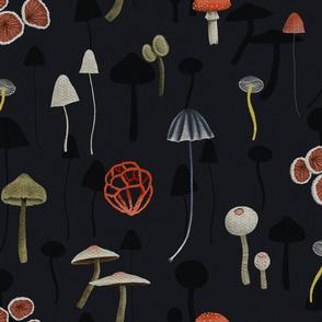 Dark Mystery Fungi - Large Scale