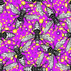 bees_purple/yellow