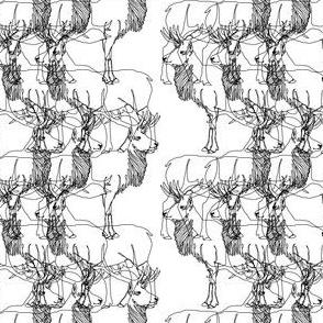 elk_line_drawings_bw
