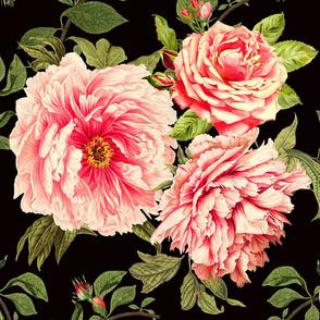 Vintage Botanical on Black