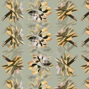 Chicks.n.Hens-rows-Green