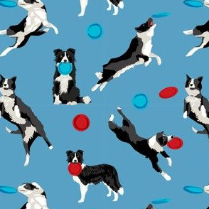 Border Collie Disc Dog fabric - disc dog, dog, dogs, agility dog, border collie fabric, black and white border collie dog, dog fabric by the yard -  blue