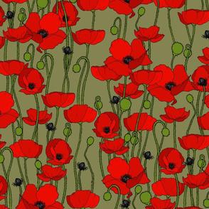 poppy repeat moss