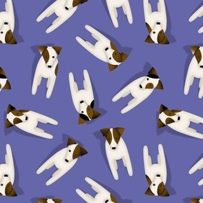 Parson / Jack Russell Terriers with cute head tilt pattern / Goldenrod