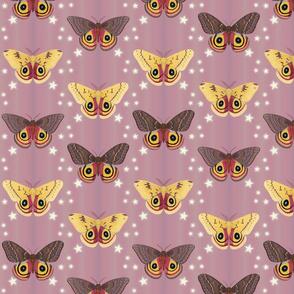 io moths on mauve purple