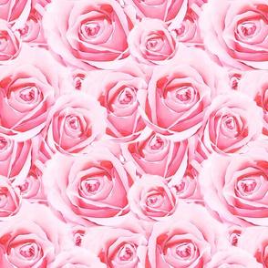Romantic Pink Rose Pattern