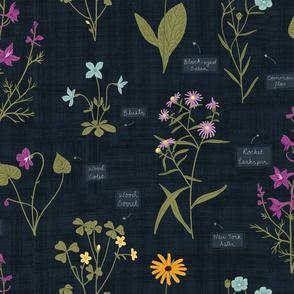 Labelled Wild Flowers on Blue Black