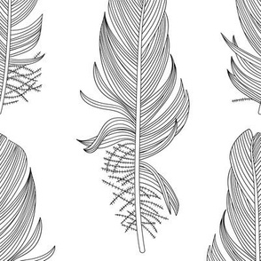 Black and White Feathers Large