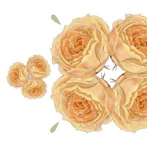 Blush rose  tea towel
