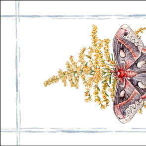 Tea Towel: Watercolor Cecropia Moth
