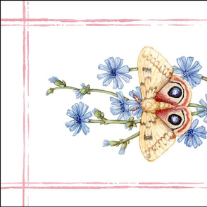 Tea Towel: Watercolor Io Moth