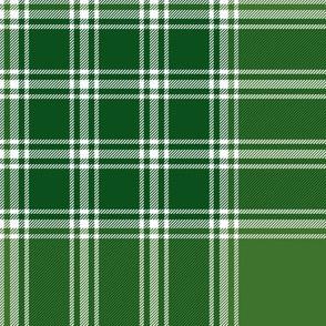 "MacDonald, Lord of the Isles, 8"" green"