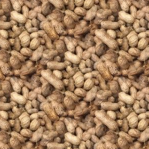 Working for Peanuts | Seamless Photo Print