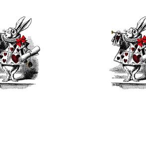 Alice in Wonderland - White Rabbit - XL