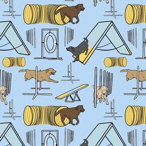 Simple Labrador Retriever agility dogs - blue