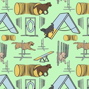 Simple Labrador Retriever agility dogs - green