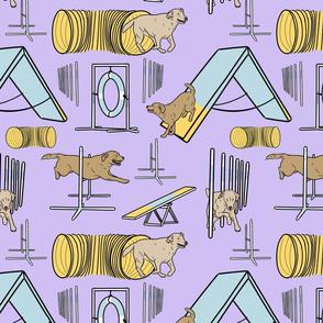 Simple yellow Labrador Retriever agility dogs - purple