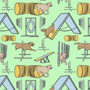 Simple yellow Labrador Retriever agility dogs - green