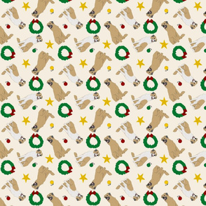 Tiny Anatolian Shepherd dogs - Christmas