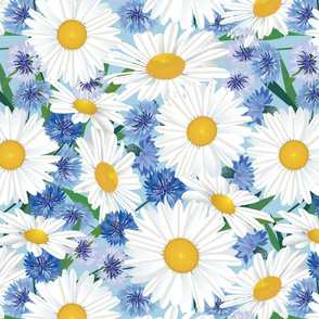 White Daisies on Blue
