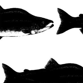 Black & white salmon