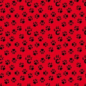 Bear Cat Paw Prints