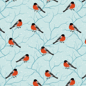 Robin Red Breast Winter Garden